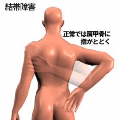 gojukata6